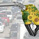 biodiesel, duurzaamheid, duurzame brandstof, E10, ethanol, Euro95, brandstof