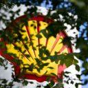 Shell logo prijspaal